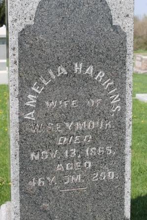 HARKINS SEYMOUR, AMELIA - Des Moines County, Iowa | AMELIA HARKINS SEYMOUR