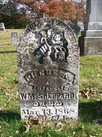 SHEPPARD, PHEBE A. - Des Moines County, Iowa | PHEBE A. SHEPPARD