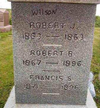 WILSON, ROBERT J. - Des Moines County, Iowa | ROBERT J. WILSON