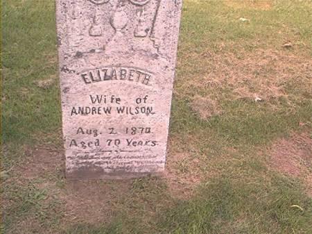 WILSON, ELIZABETH - Des Moines County, Iowa | ELIZABETH WILSON