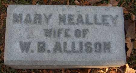ALLISON, MARY - Dubuque County, Iowa | MARY ALLISON