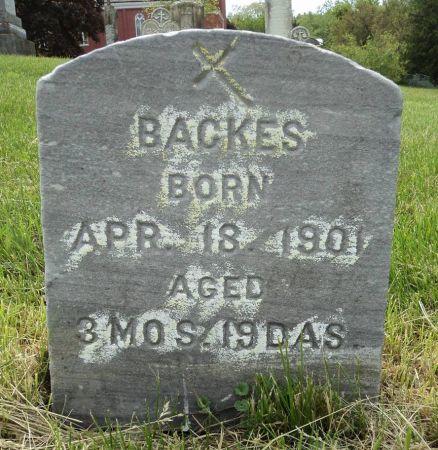 BACKES, VALENTINE - Dubuque County, Iowa | VALENTINE BACKES