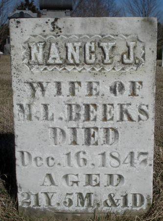 BEEKS, NANCY J. - Dubuque County, Iowa   NANCY J. BEEKS