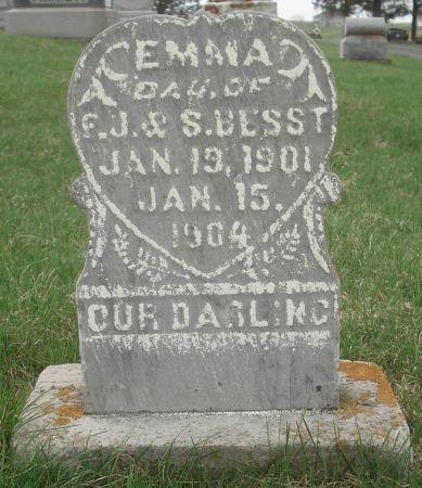 BESST, EMMA - Dubuque County, Iowa | EMMA BESST
