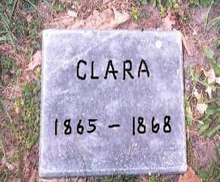 BLOCKLINGER, CLARA - Dubuque County, Iowa   CLARA BLOCKLINGER