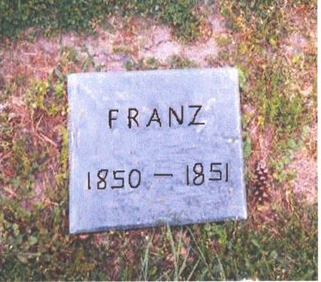 BLOCKLINGER, FRANZ - Dubuque County, Iowa | FRANZ BLOCKLINGER