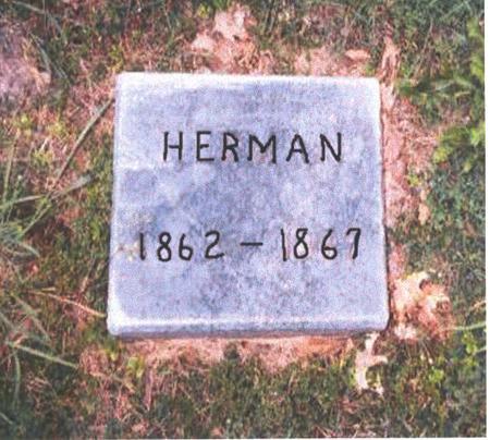 BLOCKLINGER, HERMAN - Dubuque County, Iowa | HERMAN BLOCKLINGER