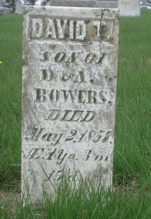 BOWERS, DAVID T. - Dubuque County, Iowa   DAVID T. BOWERS