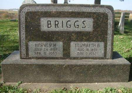 BRIGGS, HARVEY H. - Dubuque County, Iowa | HARVEY H. BRIGGS