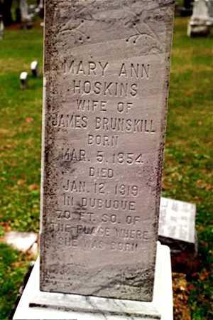 BRUNSKILL, MARY ANN - Dubuque County, Iowa | MARY ANN BRUNSKILL