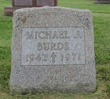 BURDS, MICHAEL J. - Dubuque County, Iowa | MICHAEL J. BURDS