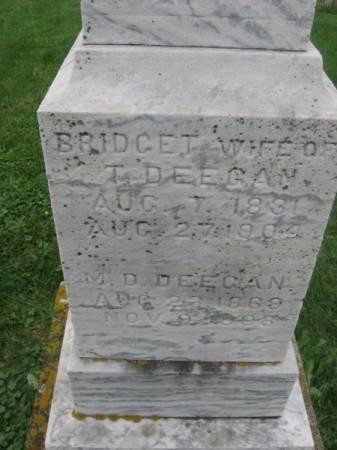 DEEGAN, M. D. - Dubuque County, Iowa | M. D. DEEGAN