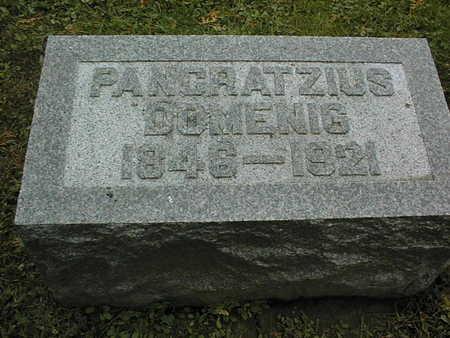 DOMENIG, PANCRATZIUS - Dubuque County, Iowa   PANCRATZIUS DOMENIG