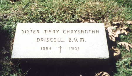DRISCOLL, SISTER MARY CHRYSANTHA - Dubuque County, Iowa | SISTER MARY CHRYSANTHA DRISCOLL