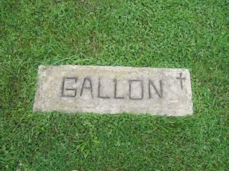 GALLON, UNKNOWN - Dubuque County, Iowa | UNKNOWN GALLON