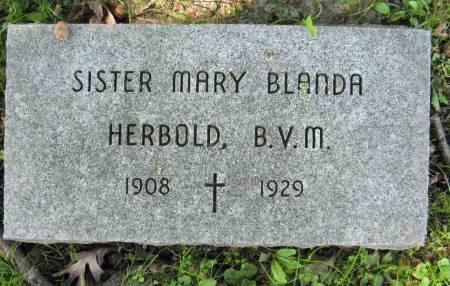 HERBOLD, SISTER MARY BLANDA - Dubuque County, Iowa   SISTER MARY BLANDA HERBOLD