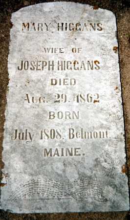 HIGGANS, MARY - Dubuque County, Iowa   MARY HIGGANS