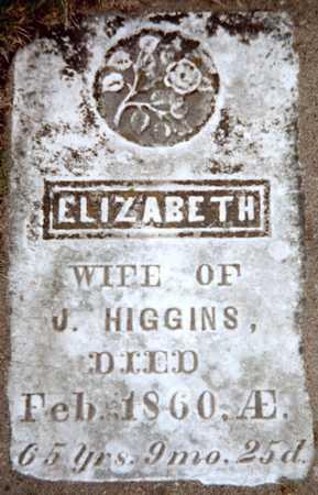 HIGGINS, ELIZABETH - Dubuque County, Iowa   ELIZABETH HIGGINS