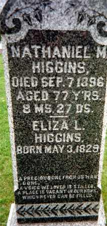 HIGGINS, ELIZA M. - Dubuque County, Iowa | ELIZA M. HIGGINS