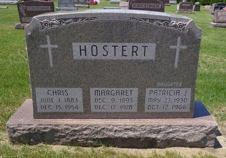 HOSTERT, PATRICIA J. - Dubuque County, Iowa | PATRICIA J. HOSTERT