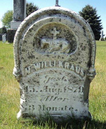 KRAUS, N. WILLIAM - Dubuque County, Iowa | N. WILLIAM KRAUS