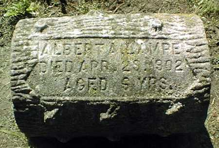 LAMPE, ALBERT A. - Dubuque County, Iowa | ALBERT A. LAMPE