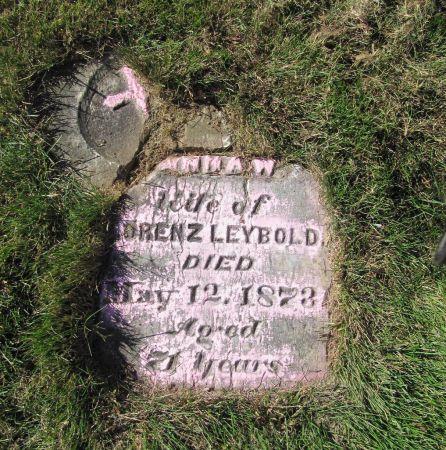 LEYBOLD, ANNA W. - Dubuque County, Iowa   ANNA W. LEYBOLD