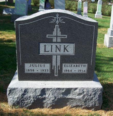 LINK, JULIUS - Dubuque County, Iowa | JULIUS LINK
