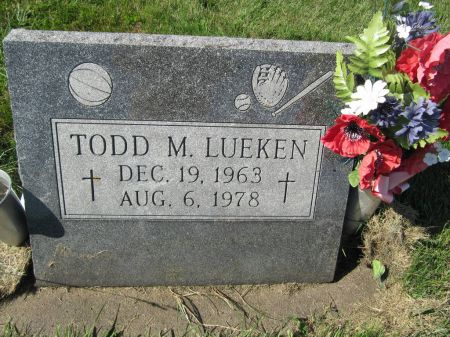 LUEKEN, TODD M. - Dubuque County, Iowa | TODD M. LUEKEN