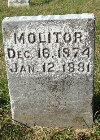MOLITOR, LOUISE - Dubuque County, Iowa | LOUISE MOLITOR