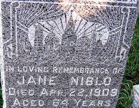 NIBLO, JANE - Dubuque County, Iowa   JANE NIBLO