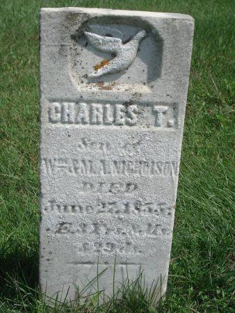 NICHOLSON, CHARLES T. - Dubuque County, Iowa   CHARLES T. NICHOLSON