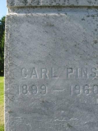 PINS, CARL - Dubuque County, Iowa | CARL PINS