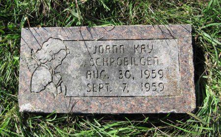 SCHROBILGEN, JOANN KAY - Dubuque County, Iowa | JOANN KAY SCHROBILGEN