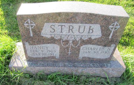 STRUB, ANDREW G. - Dubuque County, Iowa   ANDREW G. STRUB