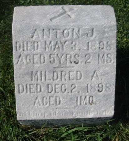THIELEN, ANTON J. - Dubuque County, Iowa | ANTON J. THIELEN