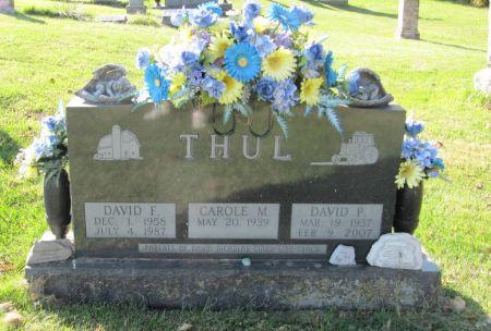 THUL, DAVID P. - Dubuque County, Iowa | DAVID P. THUL