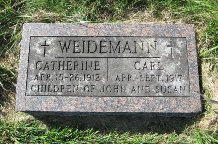 WEIDEMANN, CARL - Dubuque County, Iowa | CARL WEIDEMANN