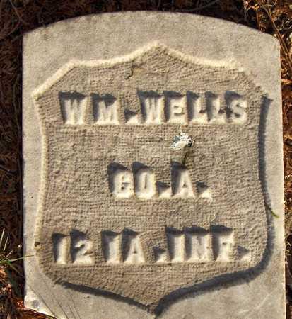 WELLS, WM. - Dubuque County, Iowa | WM. WELLS