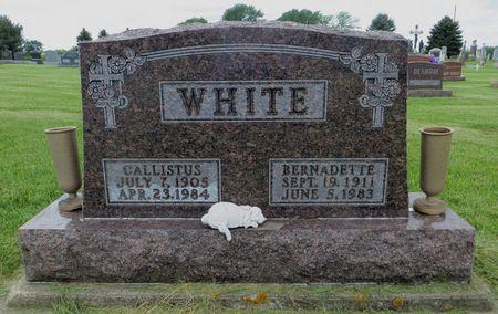 WHITE, BERNADETTE - Dubuque County, Iowa | BERNADETTE WHITE