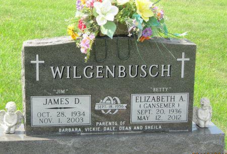 WILGENBUSCH, JAMES D.