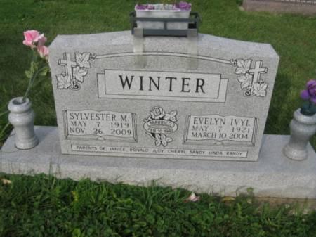 WINTER, SYLVESTER M. - Dubuque County, Iowa | SYLVESTER M. WINTER