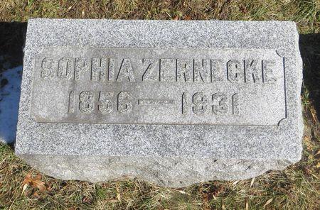 MERTZ ZERNECKE, SOPHIA - Dubuque County, Iowa | SOPHIA MERTZ ZERNECKE