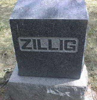 ZILLIG, FAMILY - Dubuque County, Iowa | FAMILY ZILLIG