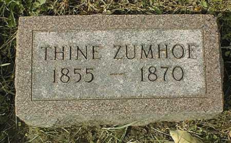 ZUMHOF, THINE - Dubuque County, Iowa | THINE ZUMHOF