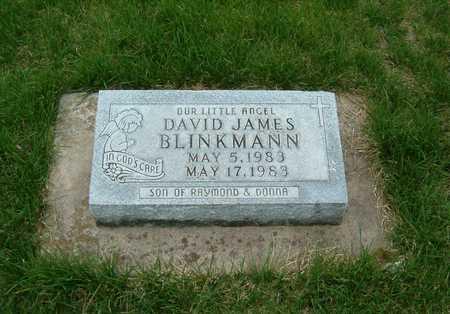 BLINKMANN, DAVID JAMES - Emmet County, Iowa   DAVID JAMES BLINKMANN