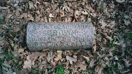 BROWN, EMILY CAROLINE - Emmet County, Iowa | EMILY CAROLINE BROWN