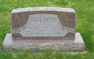 NELSON, HARRY - Emmet County, Iowa | HARRY NELSON