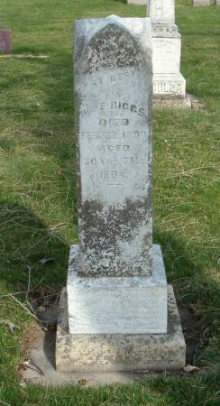 RIGGS, WILLIAM E. - Emmet County, Iowa | WILLIAM E. RIGGS