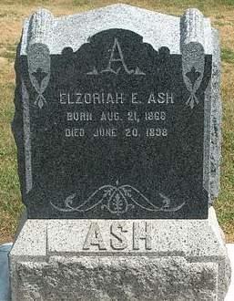 ASH, ELZORIAH E. - Fayette County, Iowa | ELZORIAH E. ASH